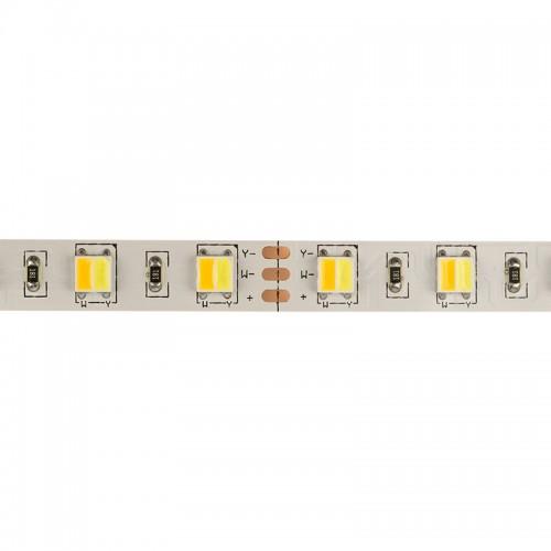 LED лента White Mix, 12 В, 12 мм, IP23, SMD 5050, 60 LED/m, цвет свечения белый (6000 К) + цвет свечения теплый белый (3000 К)