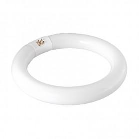 Лампа REXANT кольцевая люминесцентная Ø30 мм, 22 Вт