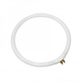 Лампа REXANT кольцевая люминесцентная Ø13 мм, 22 Вт