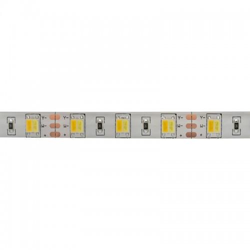 LED лента White Mix, 12 В, 12 мм, IP65, SMD 5050, 60 LED/m, цвет свечения белый (6000 К) + цвет свечения теплый белый (3000 К)