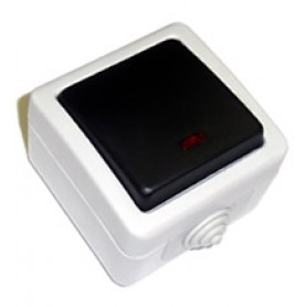 EF600SD Выключатель одноклавишый с самовозвратом (кнопка),10A (сер.)