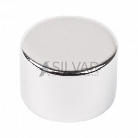 Неодимовый магнит диск 15х10мм сцепление 8 кг (Упаковка 1 шт) Rexant